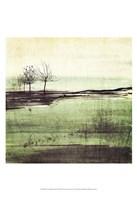 Forest Glimpse III Fine Art Print