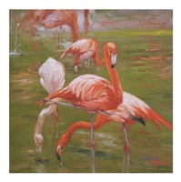 Flamingo I Framed Print