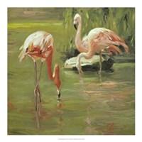 Flamingo II Fine Art Print