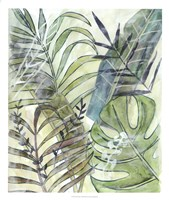Layered Palms I Framed Print