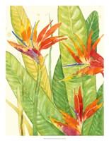 Watercolor Tropical Flowers III Fine Art Print