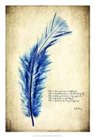 Feather in Color I Fine Art Print