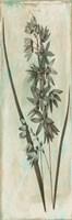 Earthy Floral Mate Framed Print