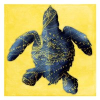 Map Turtle Y Indigo Fine Art Print