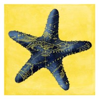 Map Starfish Y Indigo Fine Art Print