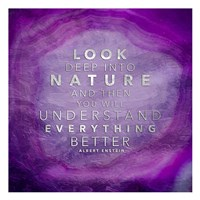 Look Nature Fine Art Print
