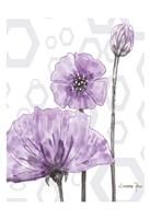 Poppy Arch Rect 1 Fine Art Print