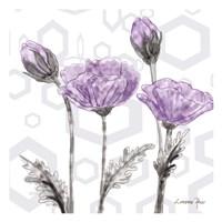 Poppy Arch 2 Fine Art Print