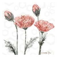 Poppy Umbrella Fine Art Print