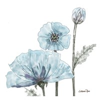 Poppy Perched 2 Fine Art Print