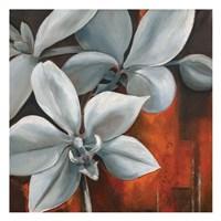 Pearl Orchid II Square Fine Art Print