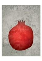 Fruit Watercolor I Framed Print