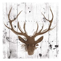 Brown Deer Head Fine Art Print