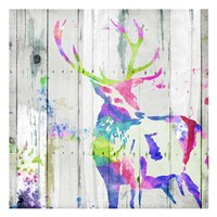 Deer Gaze Colorful Fine Art Print