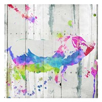 Pig Colorful Fine Art Print