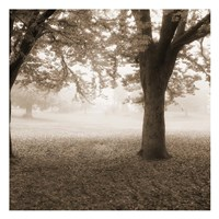 Eventide Park No Table Fine Art Print