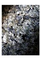 Gray Minerals 1 Fine Art Print