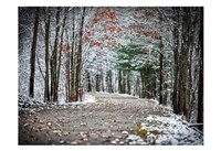 Winter's Approach Fine Art Print