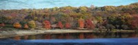 Painted Fall Fine Art Print