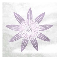 Soft Texture Flower Framed Print