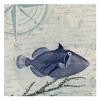Calm Blue Ocean Framed Print