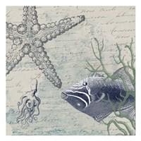 Blue Ocean Framed Print