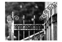 Fence 3 Fine Art Print