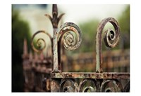 Fence Mint Fine Art Print