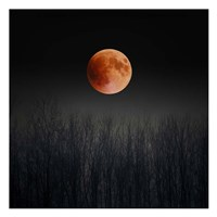 Blood Moon Fine Art Print