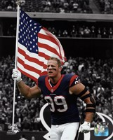 J.J. Watt 2015 Spotlight Action Fine Art Print