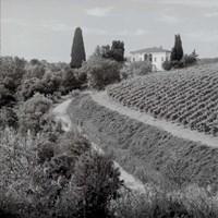 Tuscany V Fine Art Print
