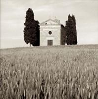 Tuscany IX Fine Art Print