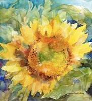 Sunshower Fine Art Print