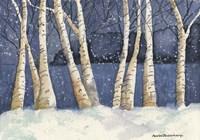 Birch, Snowy Night Fine Art Print