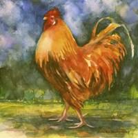 Rooster Field Fine Art Print
