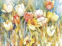 Tulip Team Fine Art Print