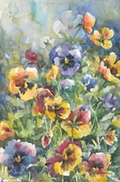 Picture Perfect Pansies Fine Art Print