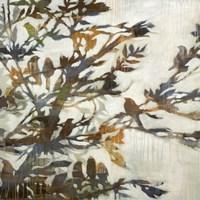 Flock Together Fine Art Print