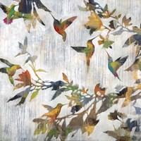 Aerial Dance Fine Art Print