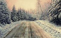 Irish Settlement Road Fine Art Print