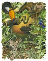Endangered Rainforest Fine Art Print