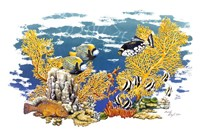 Barrier Reef Fine Art Print