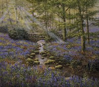 Bluebell Bridge Fine Art Print