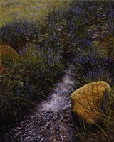 Sparkling Water Fine Art Print