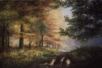 Fall In The Pines Fine Art Print