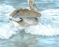 Pelican Surf Fine Art Print