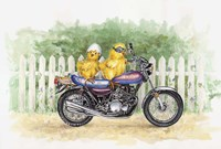 Biker Chicks Fine Art Print