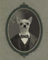 Dog Series #1 Fine Art Print