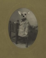 Dog Series #3 Fine Art Print