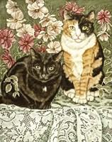 Cosmos & Lace Fine Art Print